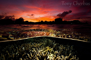 Sunset in Micronesia by Tony Cherbas 